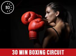 30 Min Boxing Circuit at Mick's Gym Melton