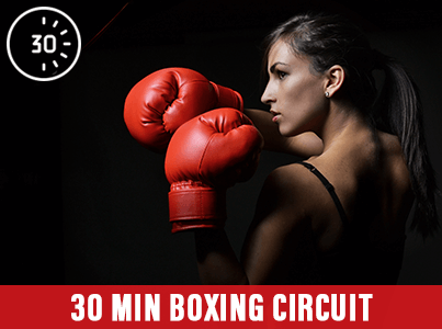 30 Min Boxing Circuit at Mick's Gym Melton